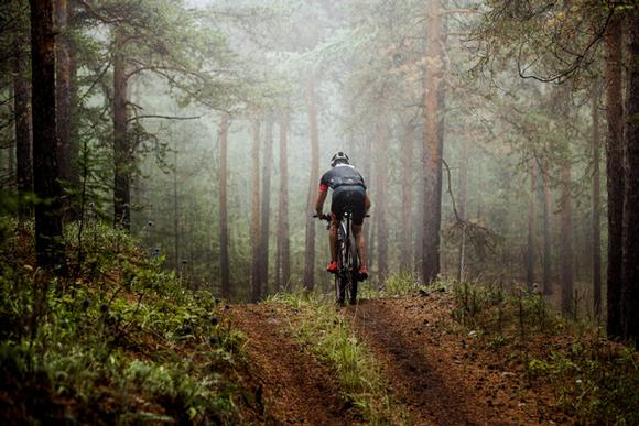 Accommodation in Newnham. The Ship. Hotel, cottage to rent, stay near Forest of Dean. Bike trails